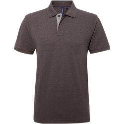 Abbigliamento Uomo Polo maniche corte Asquith & Fox AQ012 Carbone/Erica grigio