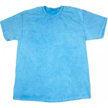 Abbigliamento Uomo T-shirt maniche corte Colortone Mineral Azzurro