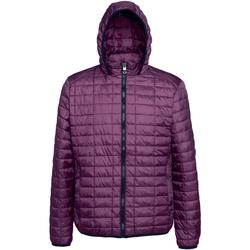 Abbigliamento Uomo Piumini 2786 TS023 Vino