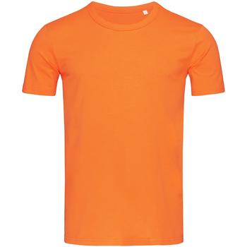 Abbigliamento Uomo T-shirt maniche corte Stedman Stars Morgan Zucca