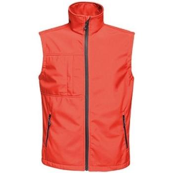 Abbigliamento Uomo Gilet / Cardigan Regatta TRA848 Rosso/nero