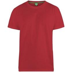 Abbigliamento Uomo T-shirt maniche corte Duke Flyers-2 Rosso