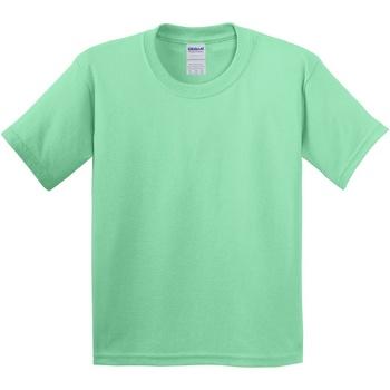 Abbigliamento Unisex bambino T-shirt maniche corte Gildan 5000B Verde menta