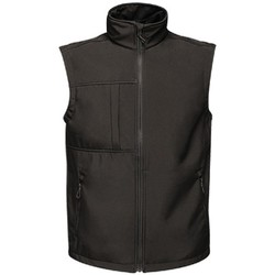 Abbigliamento Uomo Gilet / Cardigan Regatta TRA848 Nero