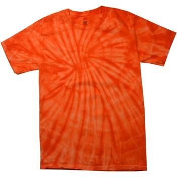 Abbigliamento Uomo T-shirt maniche corte Colortone Tonal Arancio
