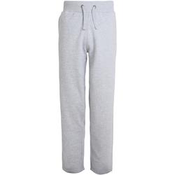 Abbigliamento Uomo Pantaloni da tuta Awdis Campus Erica grigia