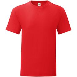 Abbigliamento Uomo T-shirt maniche corte Fruit Of The Loom 61430 Rosso