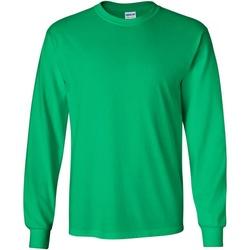 Abbigliamento Uomo T-shirts a maniche lunghe Gildan 2400 Verde irlandese