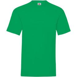Abbigliamento Uomo T-shirt maniche corte Fruit Of The Loom 61036 Multicolore