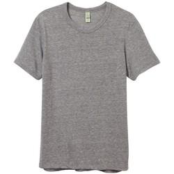 Abbigliamento Uomo T-shirt maniche corte Alternative Apparel AT001 Grigio Eco