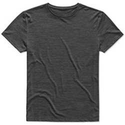 Abbigliamento Uomo T-shirt maniche corte Stedman  Erica Antracite