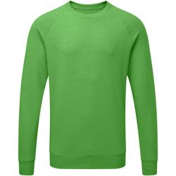 Abbigliamento Uomo Felpe Russell J280M Verde screziato