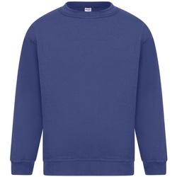 Abbigliamento Uomo Felpe Absolute Apparel Sterling Blu reale