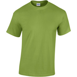 Abbigliamento Unisex bambino T-shirt maniche corte Gildan 5000B Kiwi