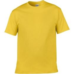 Abbigliamento Uomo T-shirt maniche corte Gildan Soft-Style Daisy