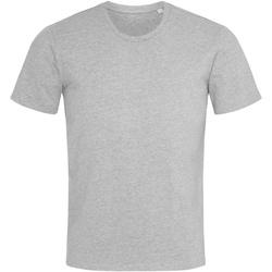 Abbigliamento Uomo T-shirt maniche corte Stedman  Erica grigia