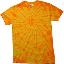 Abbigliamento Unisex bambino T-shirt maniche corte Colortone Spider Oro