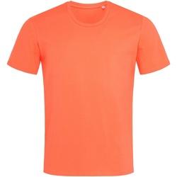 Abbigliamento Uomo T-shirt maniche corte Stedman  Arancio