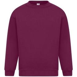 Abbigliamento Uomo Felpe Absolute Apparel Sterling Bordeaux
