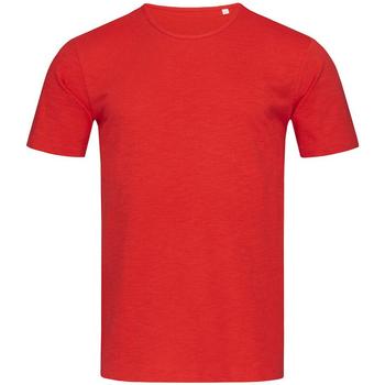 Abbigliamento Uomo T-shirt maniche corte Stedman Stars Shawn Rosso cremisi