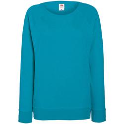 Abbigliamento Donna Felpe Fruit Of The Loom 62146 Azzurro