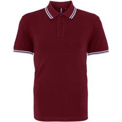 Abbigliamento Uomo Polo maniche corte Asquith & Fox AQ011 Bordeaux/Cielo