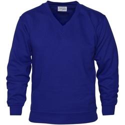 Abbigliamento Uomo Felpe Absolute Apparel  Blu reale