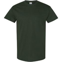 Abbigliamento Uomo T-shirt maniche corte Gildan Heavy Verde foresta