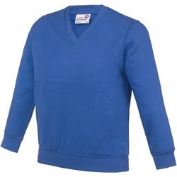 Abbigliamento Unisex bambino Felpe Awdis AC03J Blu reale
