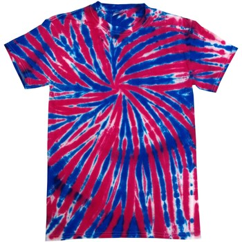 Abbigliamento Unisex bambino T-shirt maniche corte Colortone TD02B Bandiera inglese