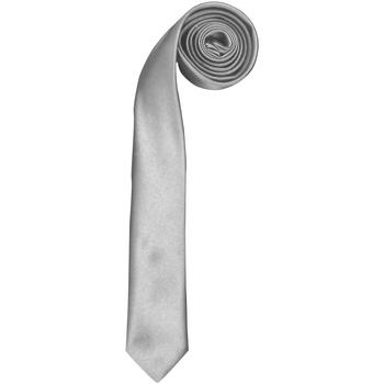 Abbigliamento Uomo Cravatte e accessori Premier PR793 Argento