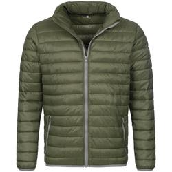 Abbigliamento Uomo Piumini Stedman  Verde militare