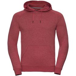 Abbigliamento Uomo Felpe Russell R281M Rosso screziato