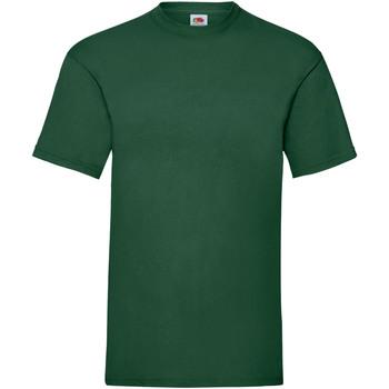 Abbigliamento Uomo T-shirt maniche corte Fruit Of The Loom 61036 Verde bottiglia