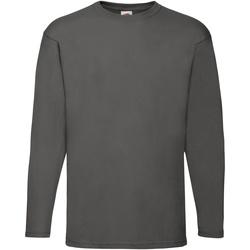 Abbigliamento Uomo T-shirts a maniche lunghe Fruit Of The Loom 61038 Grafite chiaro