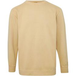 Abbigliamento Uomo Felpe Comfort Colors CO040 Mostarda