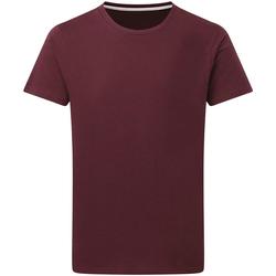 Abbigliamento Uomo T-shirt maniche corte Sg Perfect Bordeaux