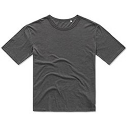 Abbigliamento Uomo T-shirt maniche corte Stedman Stars  Grigio ardesia