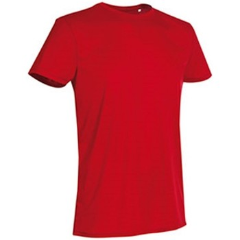 Abbigliamento Uomo T-shirt maniche corte Stedman  Rosso cremisi