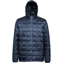 Abbigliamento Uomo Piumini 2786 TS025 Acciaio