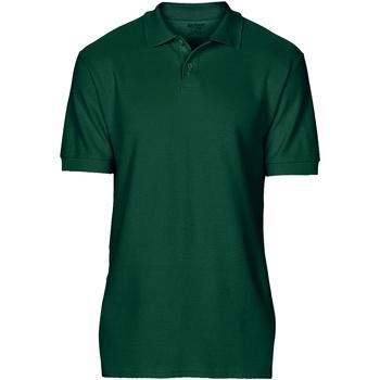 Abbigliamento Uomo Polo maniche corte Gildan 64800 Verde foresta