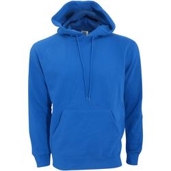 Abbigliamento Uomo Felpe Sg SG27 Blu reale