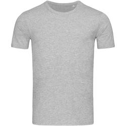 Abbigliamento Uomo T-shirt maniche corte Stedman Stars Morgan Grigio screziato