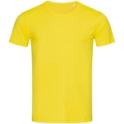 Abbigliamento Uomo T-shirt maniche corte Stedman Stars Stars Giallo