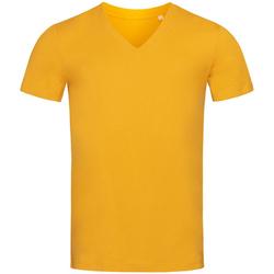 Abbigliamento Uomo T-shirt maniche corte Stedman Stars  Giallo