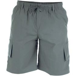 Abbigliamento Uomo Shorts / Bermuda Duke  Grigio