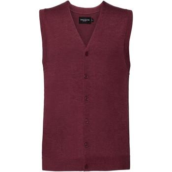 Abbigliamento Uomo Gilet / Cardigan Russell J719M Multicolore