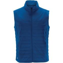 Abbigliamento Uomo Gilet / Cardigan Stormtech KXV-1 Azzurro