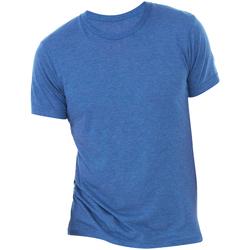 Abbigliamento Uomo T-shirt maniche corte Bella + Canvas CA3413 Blu Reale