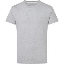 Abbigliamento Uomo T-shirt maniche corte Sg Perfect Oxford Chiaro